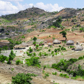 "<div><div style=""float:left;padding-left:5px;width:70%""><span class=heading><b>Biomass Management in Malawi</b> by Peter Dauenhauer (Electronic and Electrical Engineering)</span><br />In Balaka, central Malawi, a group of homes stand out in the valley of the sparsely vegetated nearby hillside.