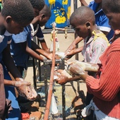 <span class=heading><b>Can you wash your hands?</b> by Kondwani Chidziwisano</span><br />Hand washing with soap is one of the most important ways to stop diarrhoea transmission, but how can we achieve this when there is no tapped water and over 1,000 children in a school? In Malawi, we are developing and testing simple engineering solutions with locally available materials to help improve group hand washing with soap at schools. Instilling this practice at a young age can help save lives.<br /><span class=small>Image: © 2019 Kondwani Chidziwisano</span>
