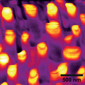 <span class=heading><b>Forest of Glowing Nanotrees</b> by Jochen Bruckbauer (Physics)</span><br /><p class=int>Incandescent light bulbs are very inefficient in transforming energy into light. Since about 20% of Earth's total power consumption is used for lighting a new and more efficient light source has to be developed. One solution is solid-state lighting, which employs light-emitting diodes (LEDs) made from semiconducting materials. My research is focused on nanostructures based on nitride semiconductors, which are a key component for bright white LEDs. Despite their commercial availability, there are still remaining problems to be solved regarding their efficiency. My main investigation technique is cathodoluminescence (CL), where an electron beam excites the sample and the emitted light from the sample is recorded. The image shows a CL map, where each pixel corresponds to the intensity of the emitted light excited by the electron beam. This technique enables us to understand the origin and optical properties of nanostructures, which lie at the heart of future highly efficient white light sources.</p><span class=small>Image: © 2012 Jochen Bruckbauer</span>. <span class=small>Paul R. Edwards, Jie Bai, Tao Wang, Robert W. Martin</span>