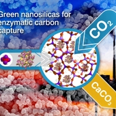 <span class=heading><b>Green Nanomaterials for Carbon Capture</b> by Claire Forsyth (Chemical & Process Engineering)</span><br />This image presents an overview of a novel carbon capture process that has been developed in Chemical and Process Engineering. The research makes use of silica that was produced using an environmentally friendly method, to support an enzyme (biological catalyst). The enzyme can efficiently remove CO<sub>2</sub> from the atmosphere by converting it to a solid form (limestone) that can readily be stored or used in a range of applications. The work demonstrates significantly improved carbon capture efficiency and could help assist the world&rsquo;s current challenge of protecting the environment by reducing emissions of greenhouse gases such as CO<sub>2</sub>. <br /><span class=small>Image: &copy; 2013 Siddharth Patwardhan</span>. &nbsp;<span class=small>Research by Claire Forsyth from Chemical & Process Engineering in collaboration with Thomas Yip and Siddharth Patwardhan</span>